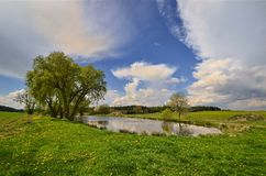 The pond in the meadow Stock Photography