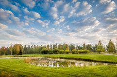Pond in meadow Royalty Free Stock Images