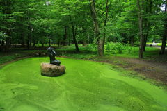 Pond and mermaid. Green pond with mermaid in the Nesvizh park Royalty Free Stock Images