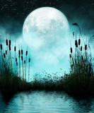 Pond and Moon at Night. 3D rendering of a full moon and silhouettes of reeds reflected in a still pond at night Royalty Free Stock Photography