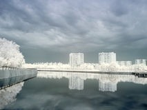 Pond in Moscow. Infrared photo Royalty Free Stock Photo