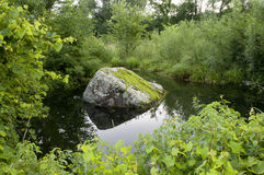 Pond and Mossy Rock Royalty Free Stock Images