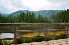 Pond in mountains. Pond in polish Tatra Mountains surrounded by peaks and trees royalty free stock photos