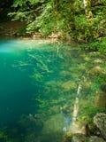 Pond nas madeiras, Ochiul Beiului, condado de Caras Severin, Romênia Imagens de Stock