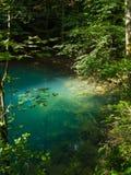 Pond nas madeiras, Ochiul Beiului, condado de Caras Severin, Romênia Fotografia de Stock Royalty Free