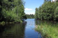 Pond in the Natural Preserve Kladska peats Stock Photos