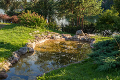 Pond near lake and forest Royalty Free Stock Photos