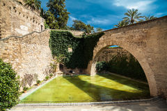The pond near Palma Cathedral Stock Photo