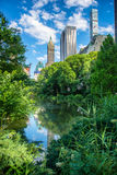 Pond in New York City Central Park at summer against skyscrapers and blue sky Royalty Free Stock Photos