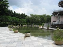 Pond next to the Spiral Lookout Tower, Tai Po waterfront park royalty free stock images