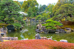 Pond o jardim e ajardinar no estilo japonês do tradtional Fotos de Stock Royalty Free