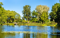 Pond of Olga in Peterhof Royalty Free Stock Images