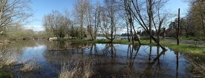 A pond panorama in Fairview OR. Stock Image