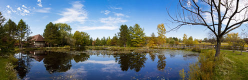 Pond panoramic Royalty Free Stock Photography