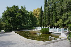 Pond in the park. Pond in the Arboretum park in the city of Sochi Stock Photo