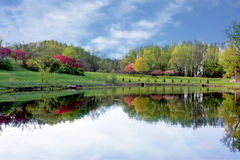 Pond in the park. With colorful trees and reflection Royalty Free Stock Photography
