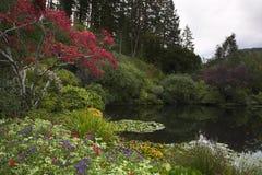 Pond in park Stock Image