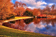 Pond in the park Royalty Free Stock Photography