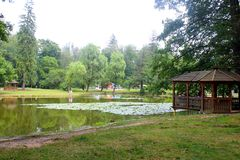 Pond in park Royalty Free Stock Images
