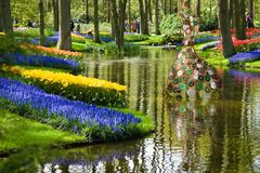 Pond in park in spring. With colorful flowers Royalty Free Stock Images
