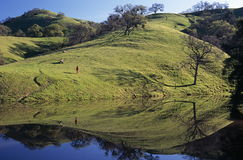 Pond and Peaceful Reflections. Hikers and their reflection on a hillside by a pond near McCorkle Trail in the Sunol Regional Wilderness, California Royalty Free Stock Images