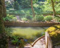 Pond in the Pena park in Sintra. Portugal royalty free stock photos