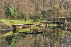 Autumn pond with a platform for anglers stock images