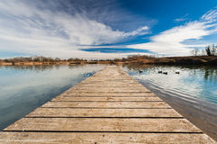 Pond Pontoon. A duck pond view from a wood pontoon with some ducks in the distance. Reflections of the vibrant blue sky on the water surface Stock Images