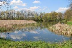 Pond in Poodri Stock Image