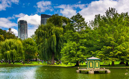 Pond in the Public Garden and buildings in Boston, Massachusetts Stock Photos
