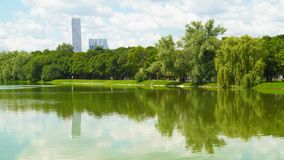 Pond in the public park. On the horizon sky with clouds and high-rise buildings stock footage