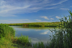 Pond with reeds, and fields in the background Stock Images