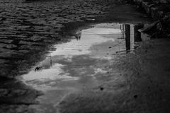 Pond reflecting the sky. Black and white pond reflecting water after rain Royalty Free Stock Images