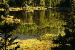 Pond Reflection. Small pond reflection in Baxter State park of Maine stock photo
