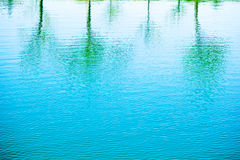 Pond reflection Royalty Free Stock Photos