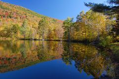 Pond reflection. Reflections converge in a pond during fall foliage season in Vermont Stock Image