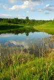 Pond reflection Stock Image