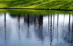 Pond, reflections, and grass  Stock Photography