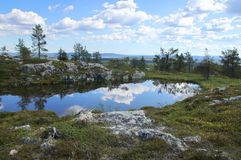 Pond reflections on top of Sarkitunturi fell Lapland. Small pond on Sarkitunturi fell top reflects the blue sky and white clouds stock images