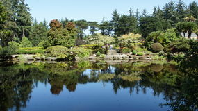 Pond reflects beautiful landscaping. Royalty Free Stock Image