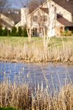 Pond in Residential Area Royalty Free Stock Photo
