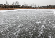 Pond Rink Royalty Free Stock Image