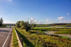 Pond on the river Alozha near the village of Gribovka, Russia royalty free stock photography