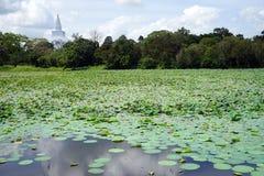 Pond and Ruwanwelisaya Dagoba Stock Photography