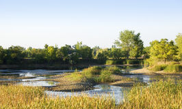 Pond with Sandbars Stock Photo