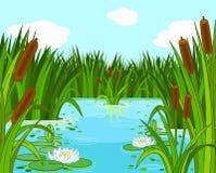Pond scene. Illustration of a pond scene Royalty Free Stock Photography