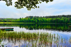 Pond scene in Maine Summertime Royalty Free Stock Photo