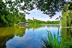 Pond ` Schlossteich ` в Хемнице Германии в солнце утра Стоковые Фотографии RF