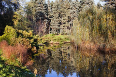 Pond in Skaryszewski Park Royalty Free Stock Photo