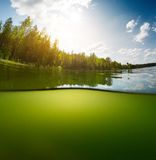 Pond with sky Royalty Free Stock Image